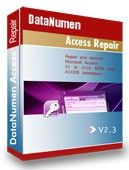 DataNumen Access Repair Discount Coupon