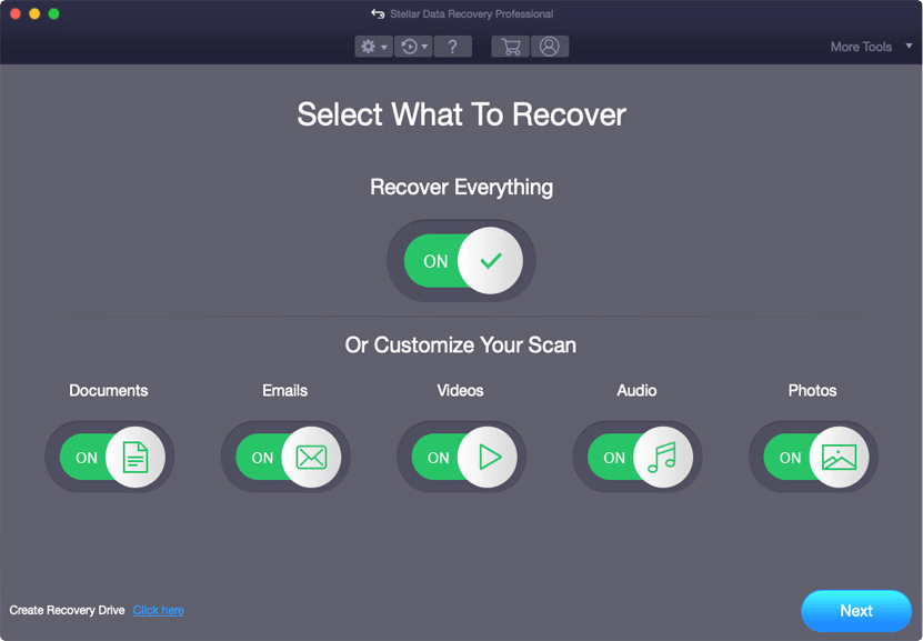Stellar Data Recovery Professional for Mac Screenshot